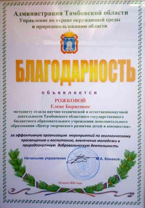 благодарность_Рожкова