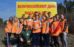 Юные защитники леса
