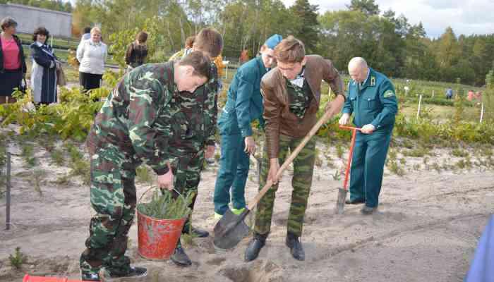 В Мичуринском районе состоялся областной семинар-практикум для руководителей школьных лесничеств