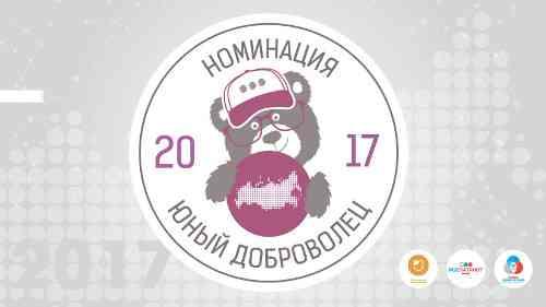 Итоги регионального этапа конкурса «Юный доброволец» Всероссийского конкурса «Доброволец России-2017»