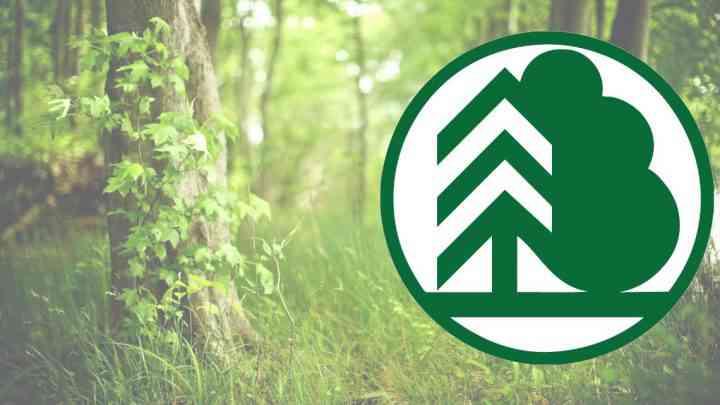 Итоги регионального этапа Всероссийского юниорского лесного конкурса «Подрост»