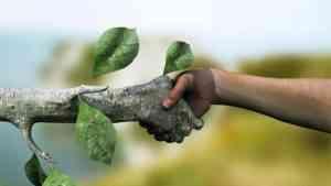 Экологический конкурс «Мы за чистые города России» Новый формат»